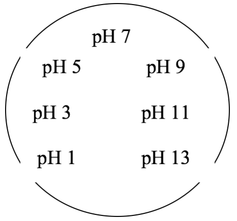 Visualisera Ph Krc